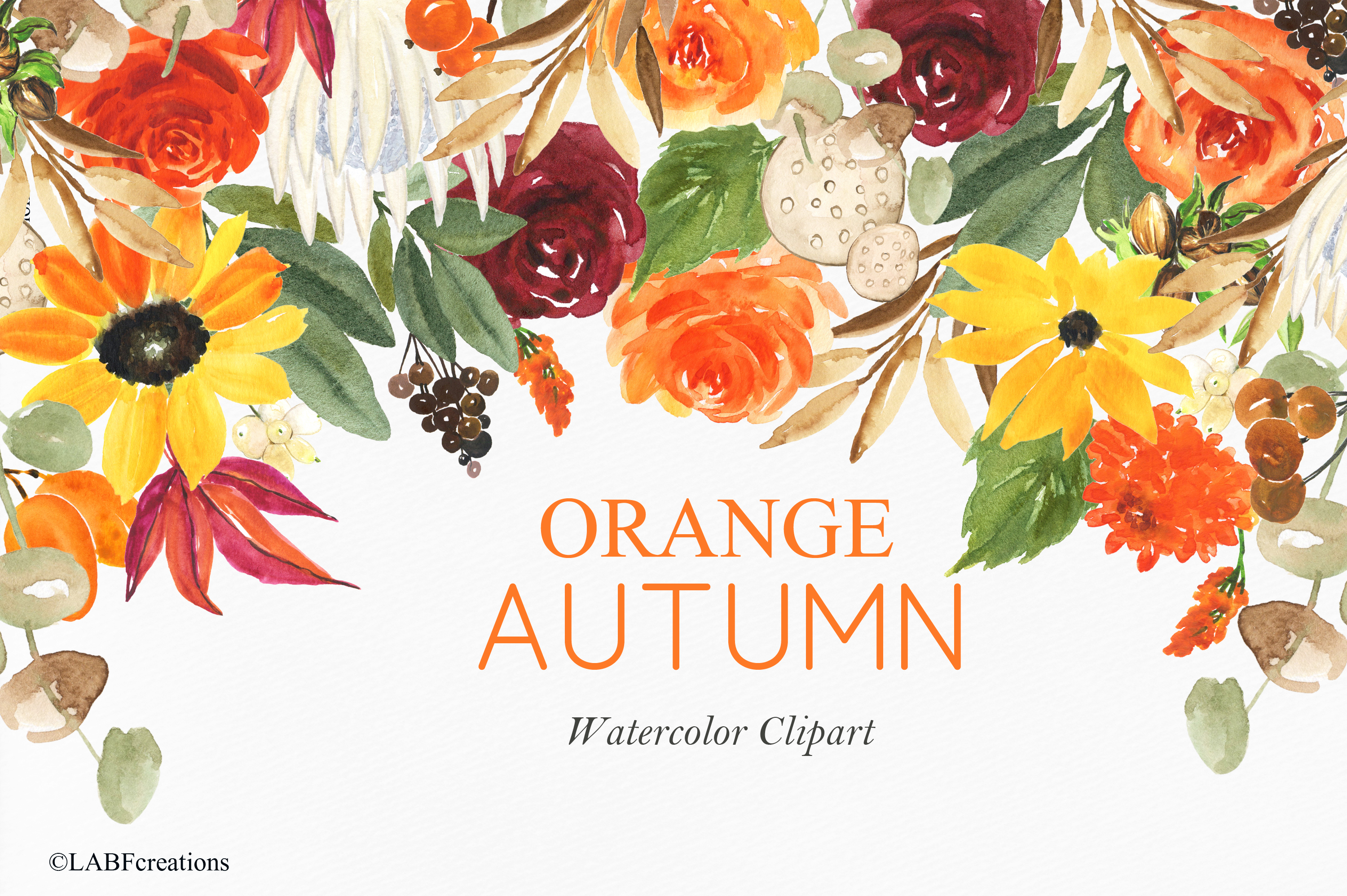 Orange, red and burgundy autumn flowers collection. example image 1