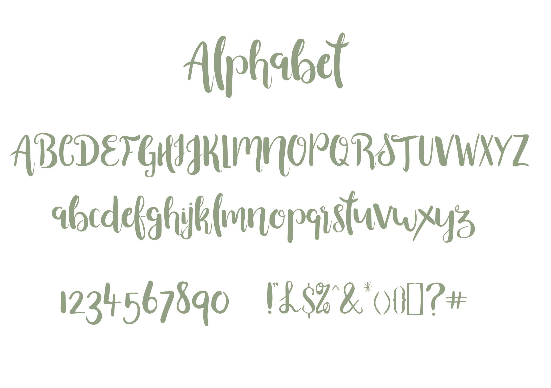 Beautiful Font with Bonus Ornament font example image 2
