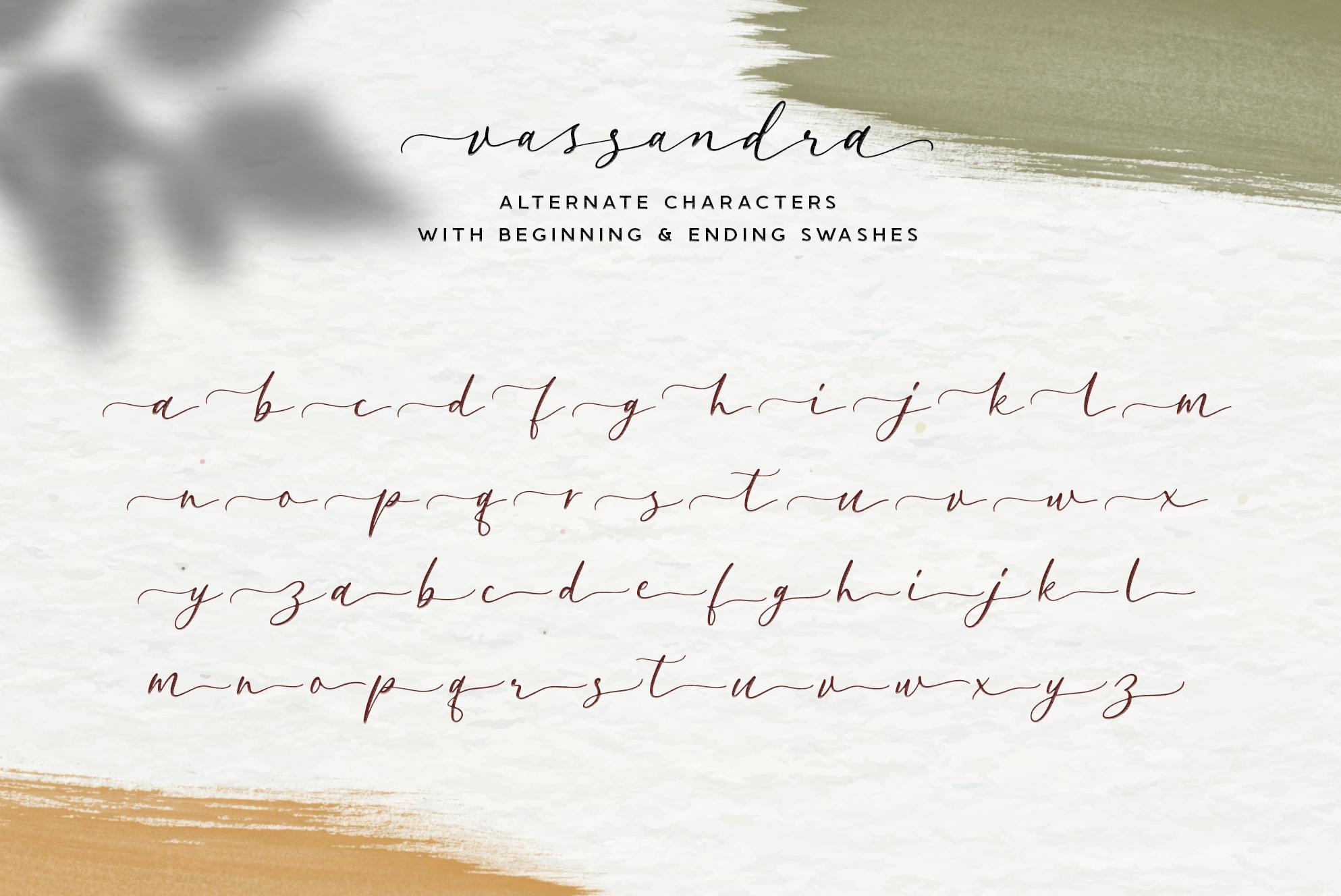 Vassandra Modern Script example image 13