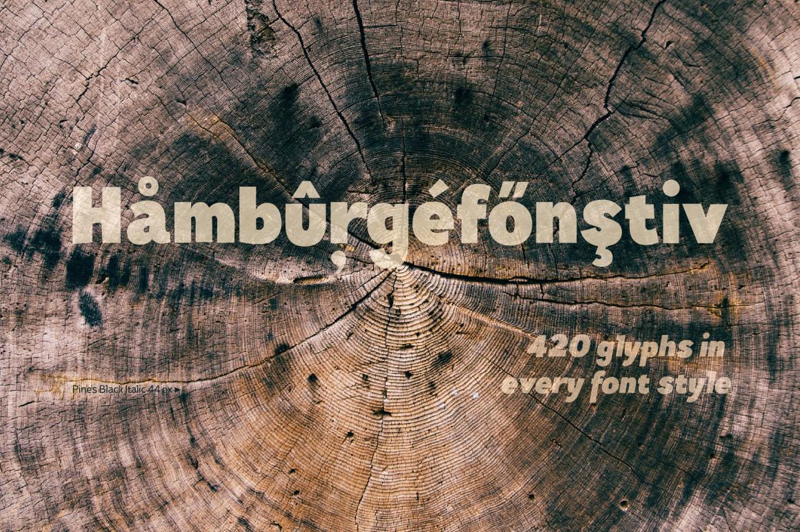 Pines Black & Pines Black Italic example image 5
