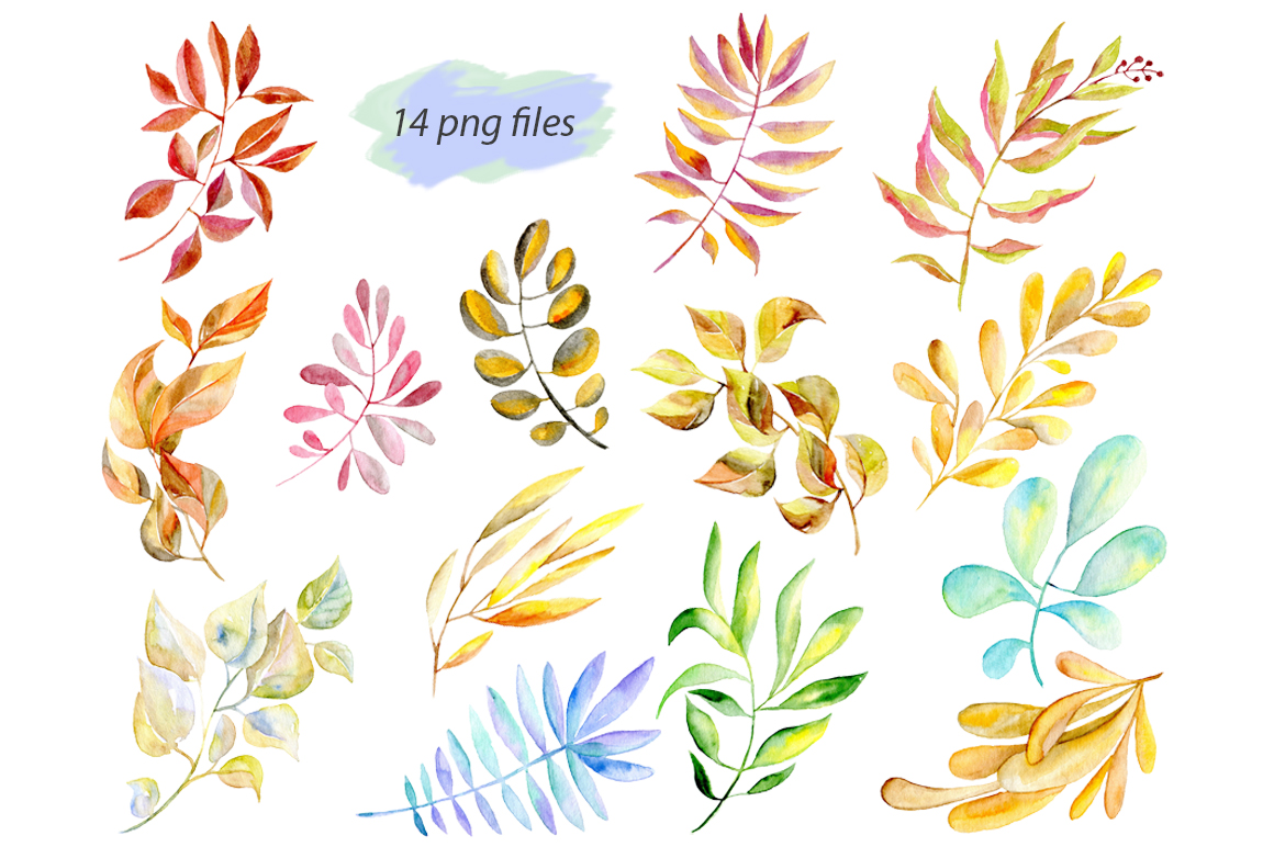 Watercolor leaves, branches png example image 2