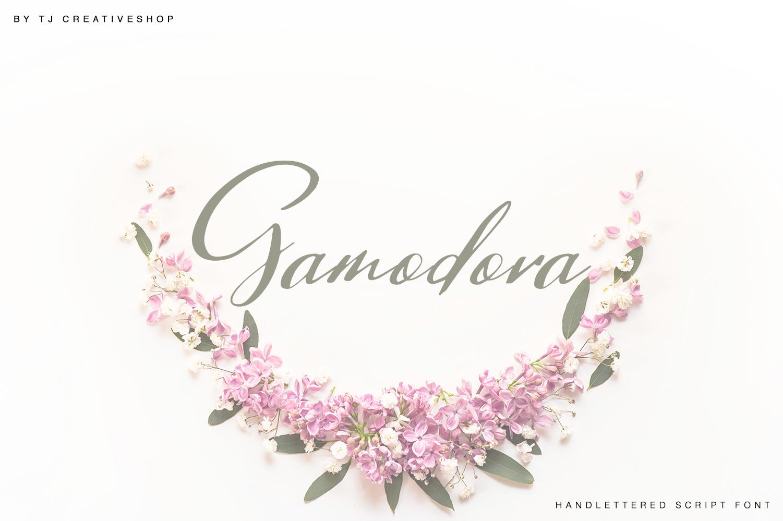 Gamodora example image 1