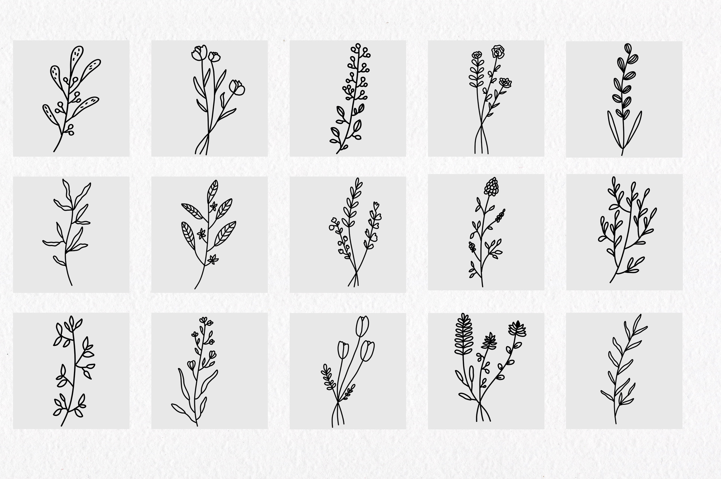 Floral and herbal elements. Hand drawn botanical art. example image 4