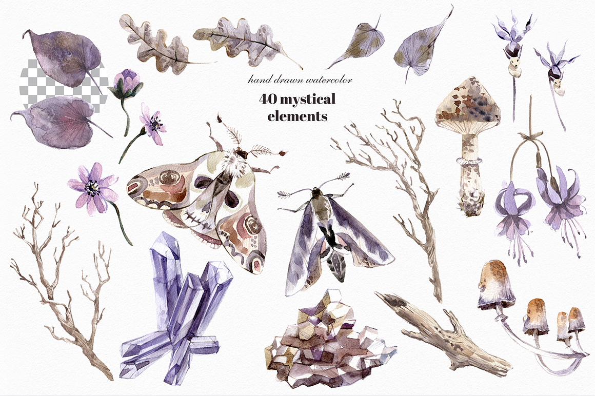 Mystical Wilds. Watercolor set. example image 6