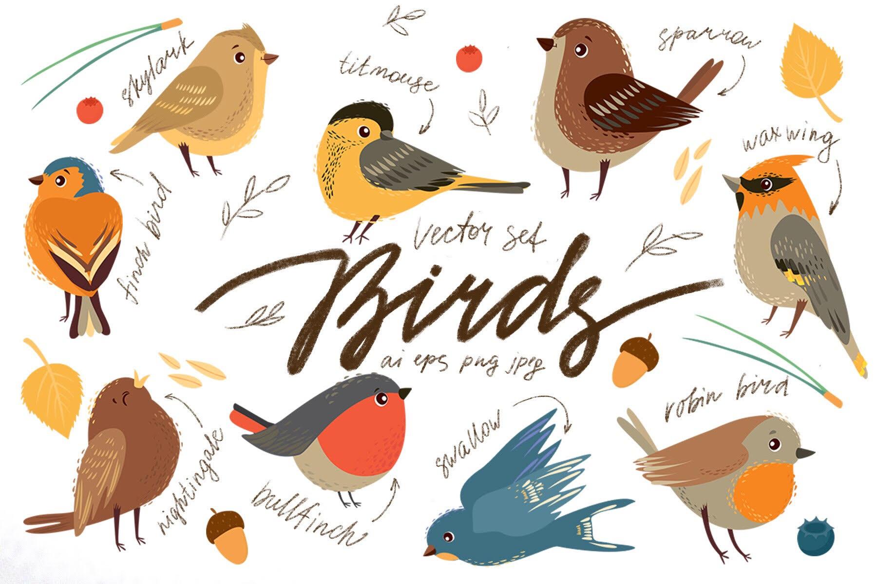 Little birds. Vector set example image 1