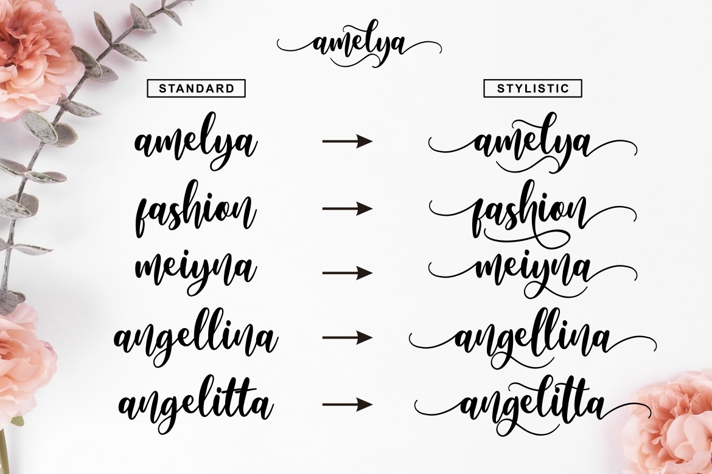 Amelya example image 2