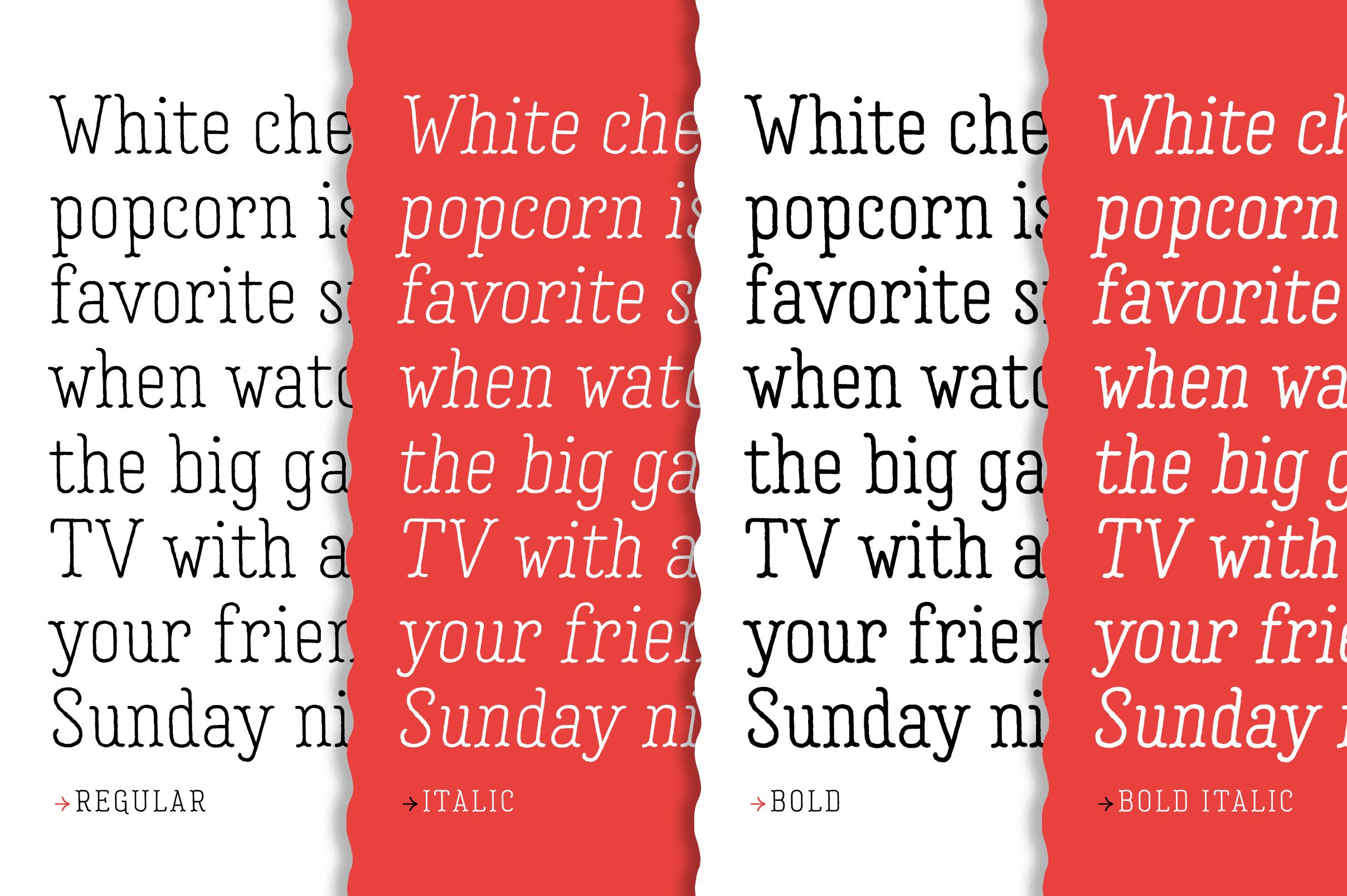 Garlic Salt Font Family example image 7