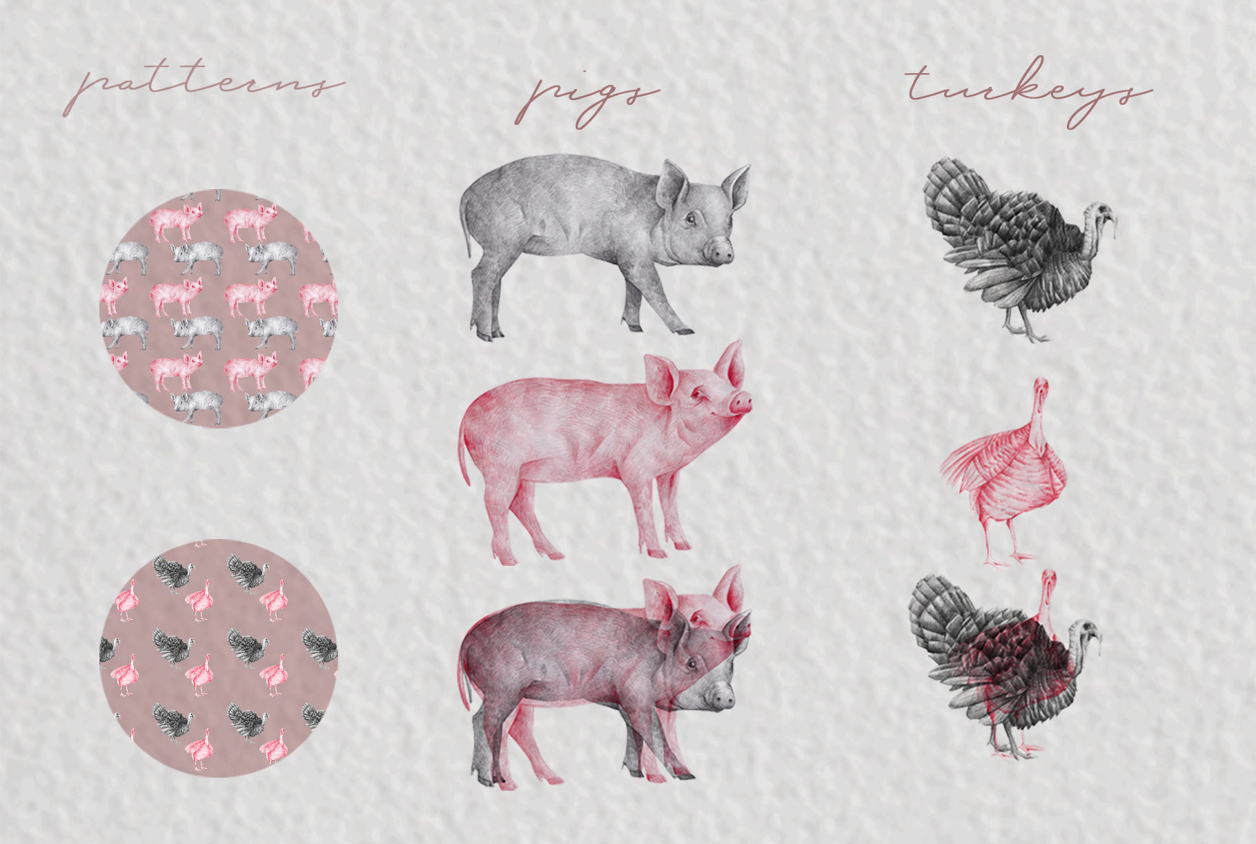 Farm Animals Illustration Pack example image 4