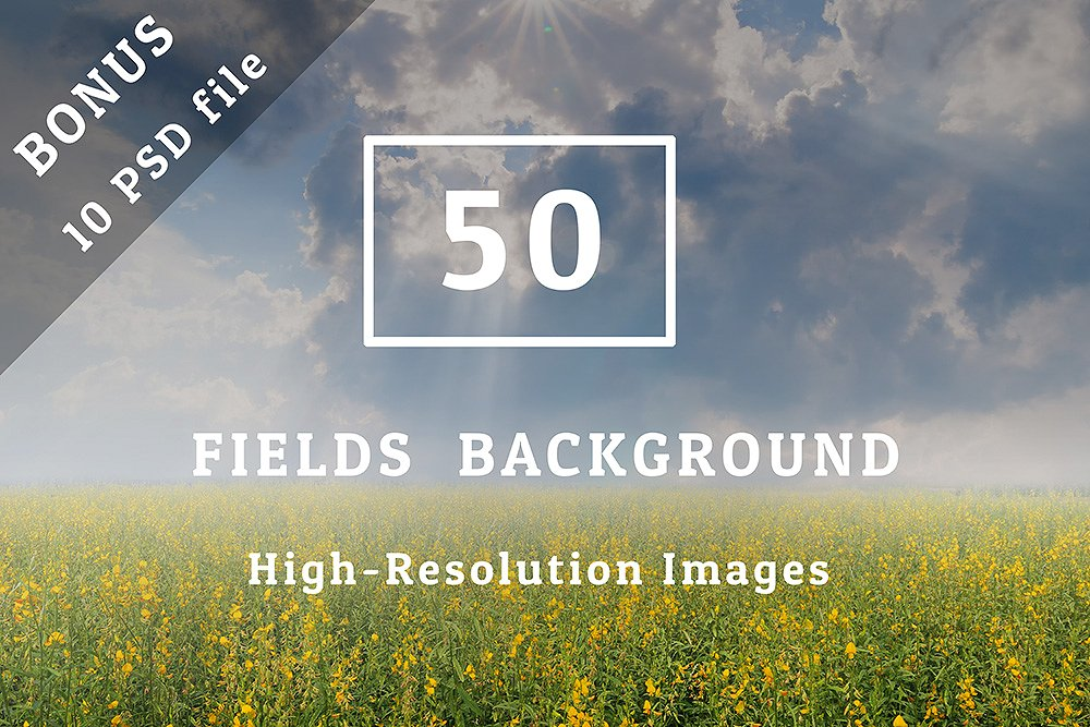3000+ Textures Background Bundle example image 22