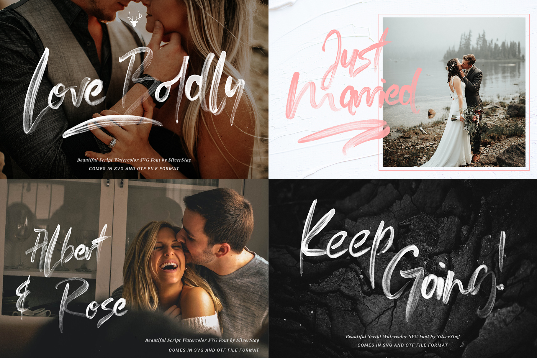 Font Bundle - Limited Time Edition With 80 Percent OFF example image 11