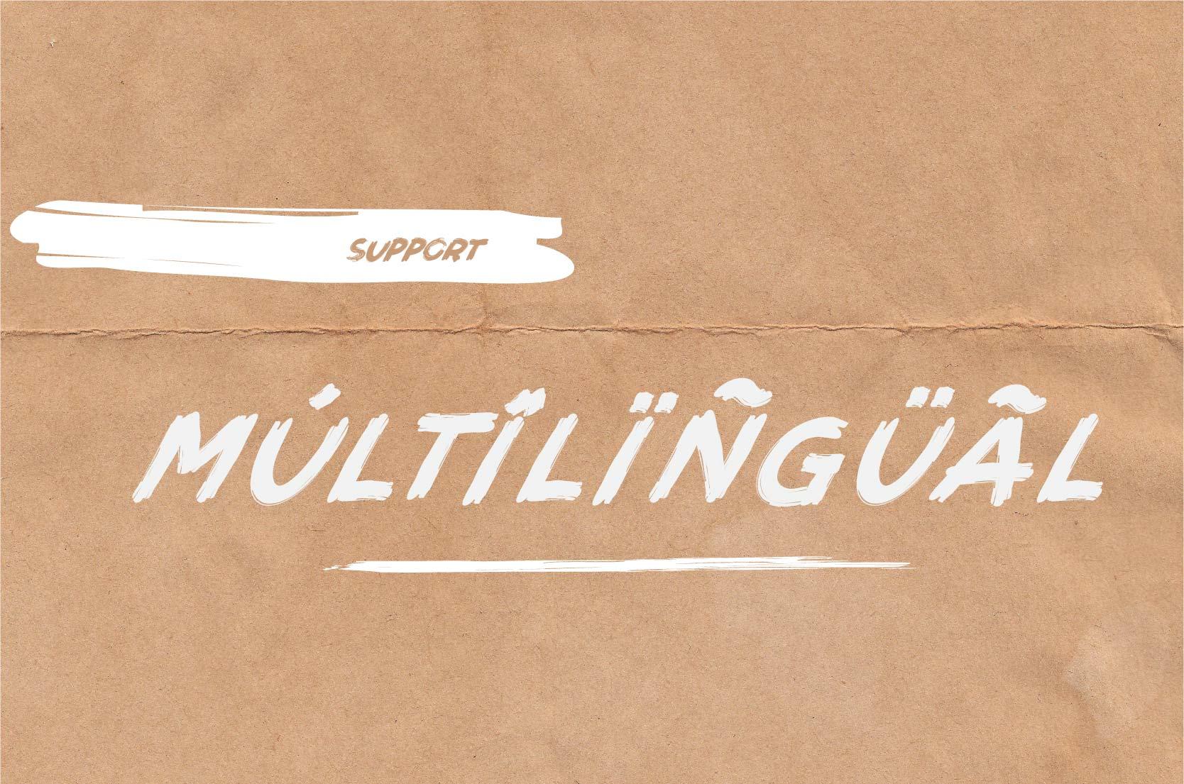 Brushot 4 Font Plus Swash example image 4