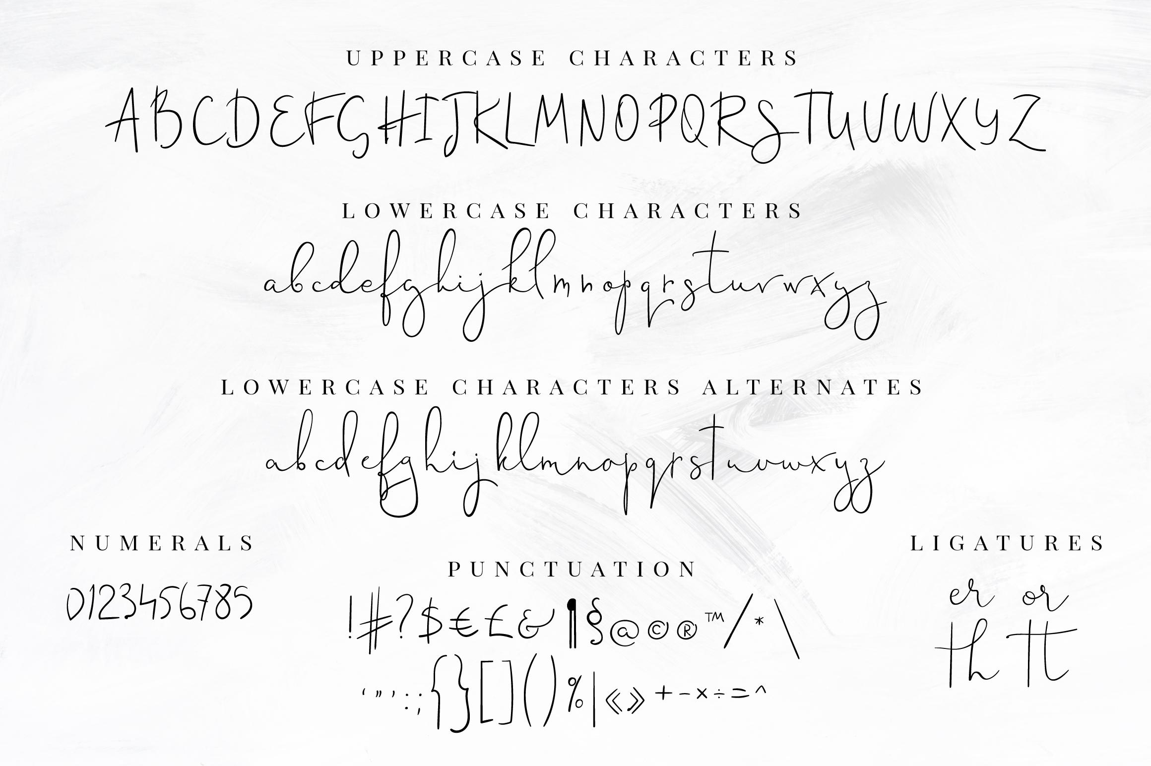 Sinali - handwritten calligraphy font example image 6