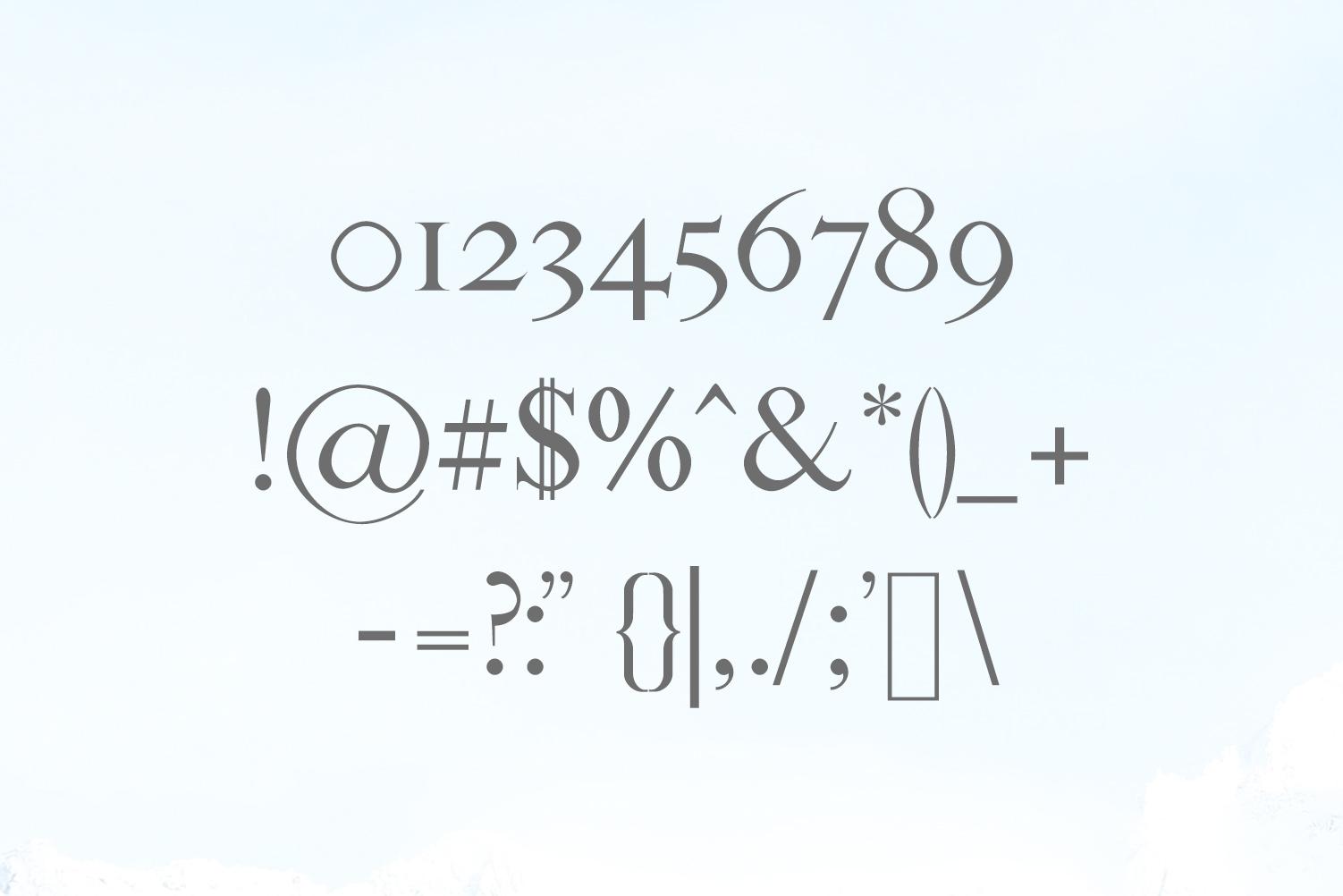 Sandover Serif Font Family example image 3