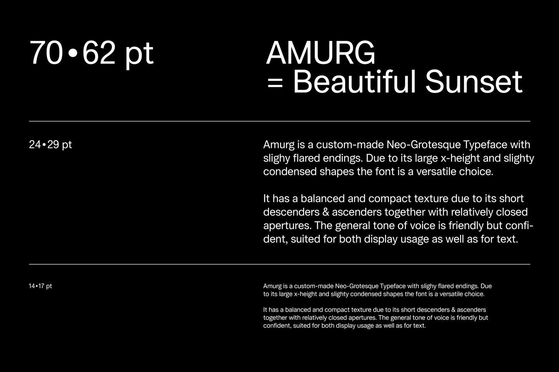 AMURG example image 1
