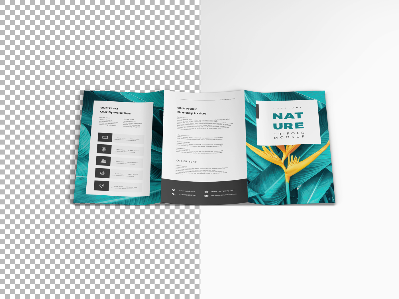 A4 Trifold Mockups V3 example image 11