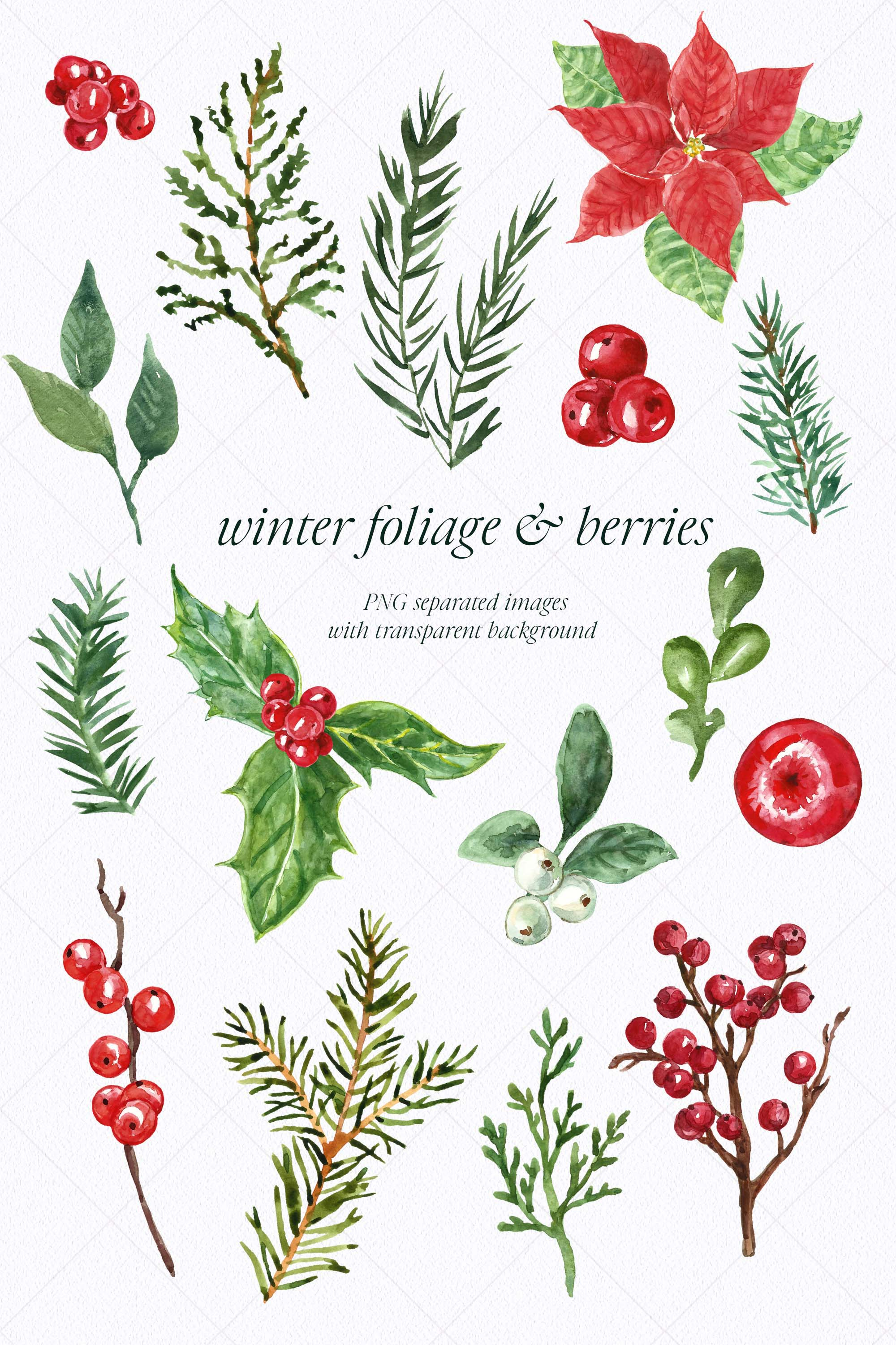 Watercolor Christmas Wreath Holiday Winter Borders Greenery example image 6