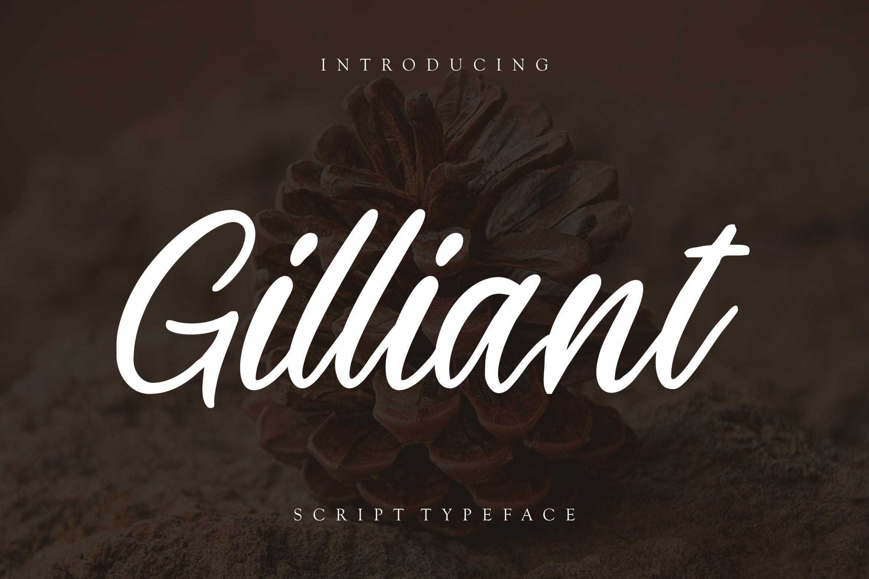 Gilliant Script Typeface example image 1