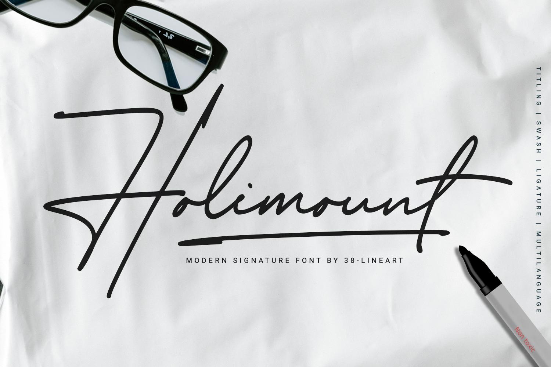Holimount example image 1