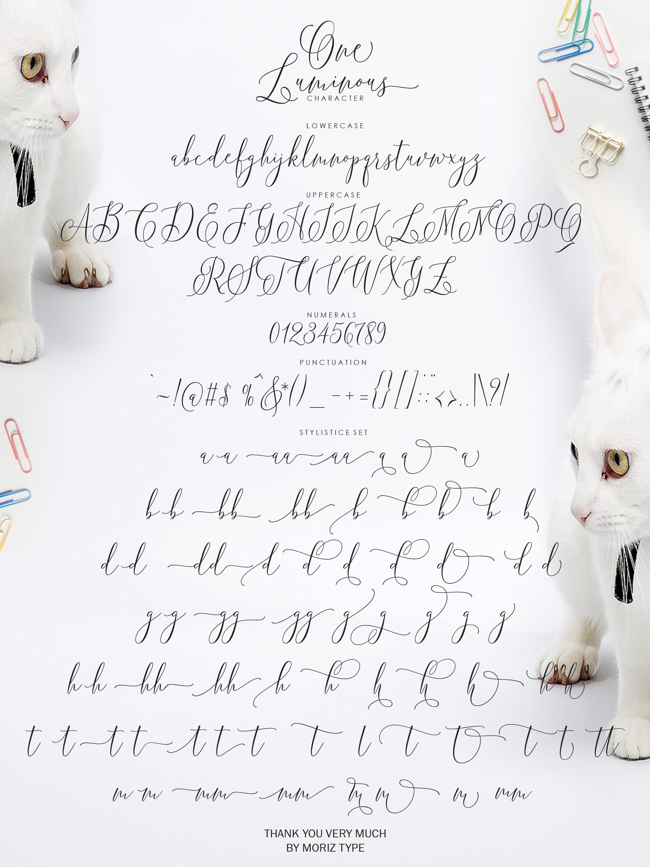 One Luminous Script example image 14