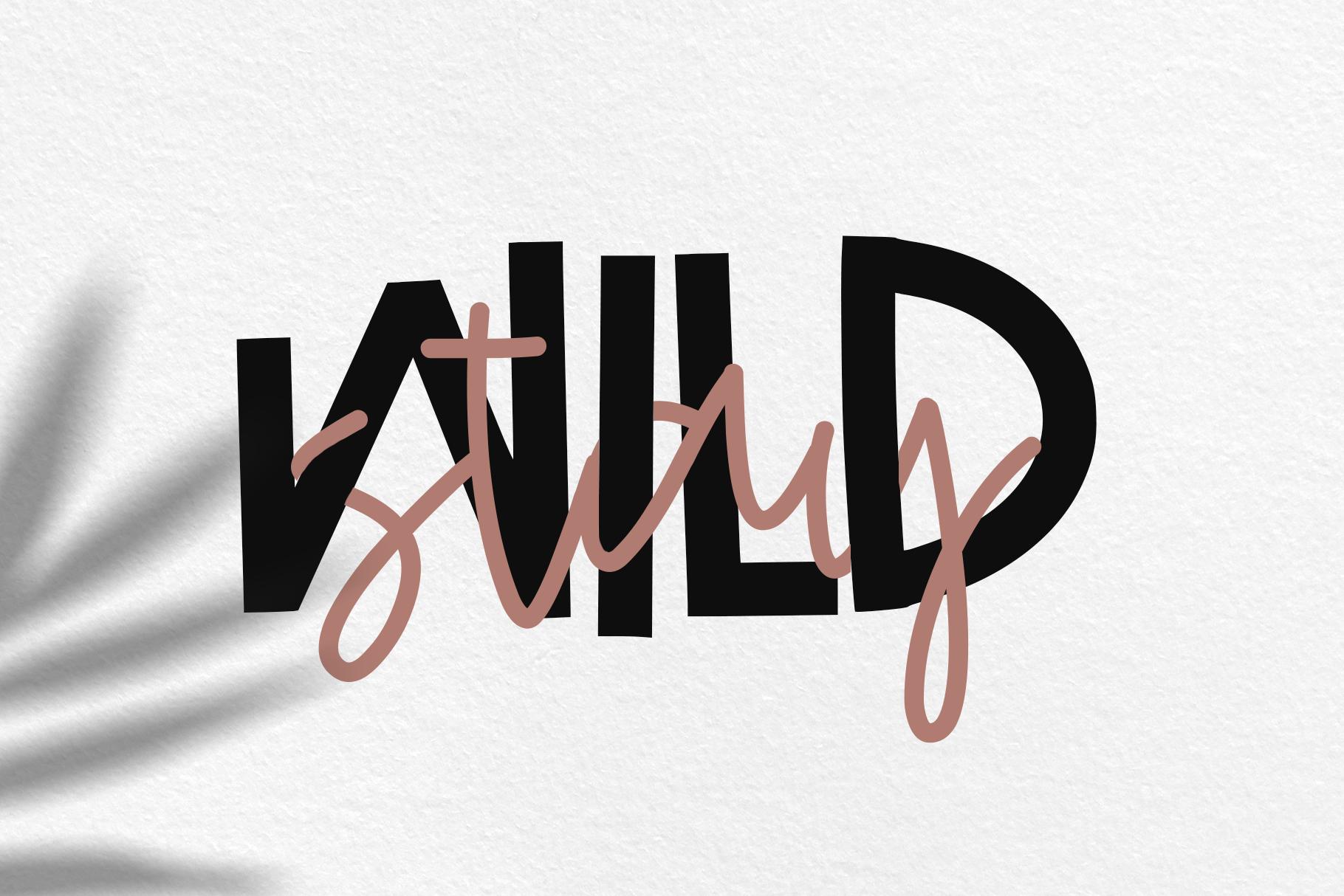Wild One- Handwritten Script & Print Font Duo example image 5