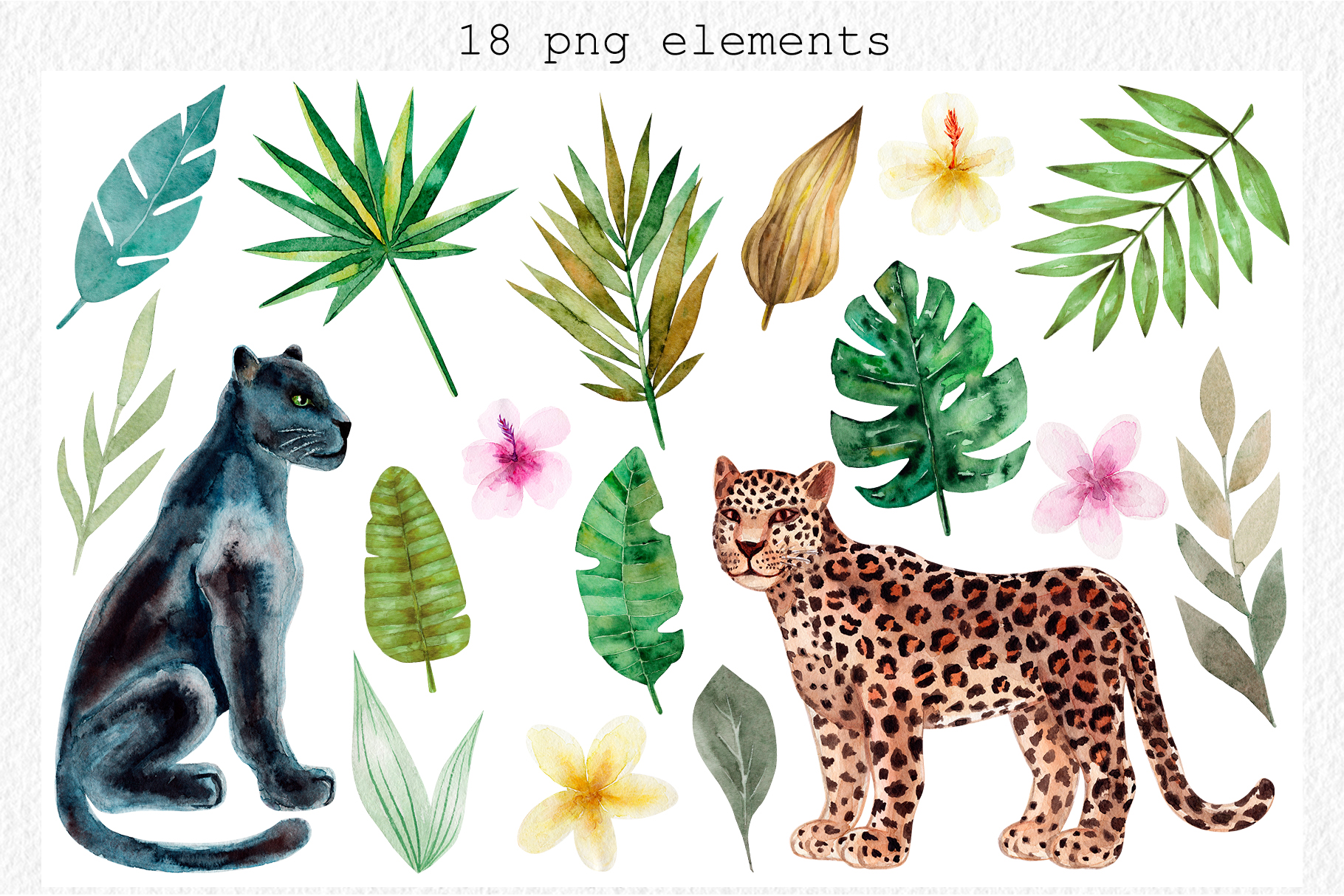 Jungle Animals. Watercolor Patterns example image 2