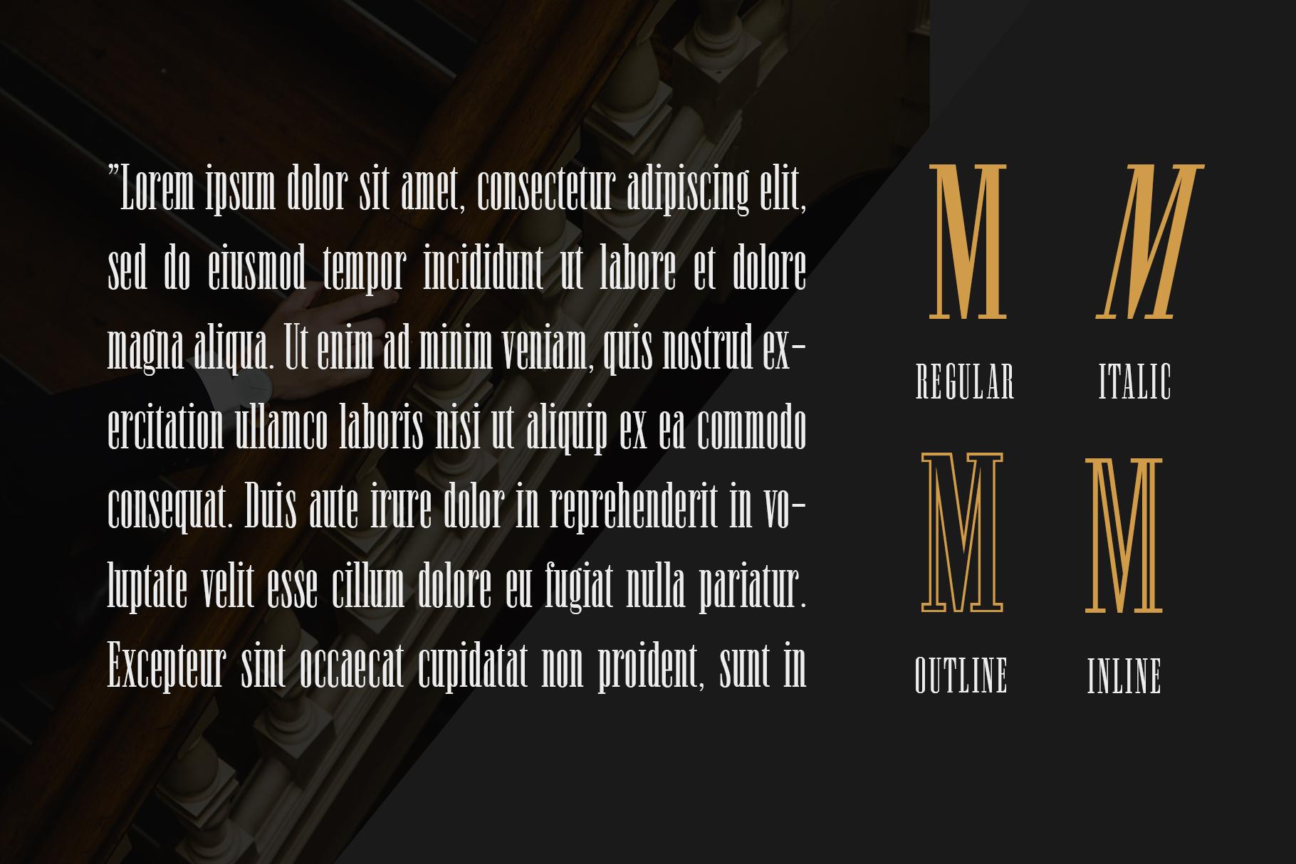 Newston - Stylish Serif Font example image 4