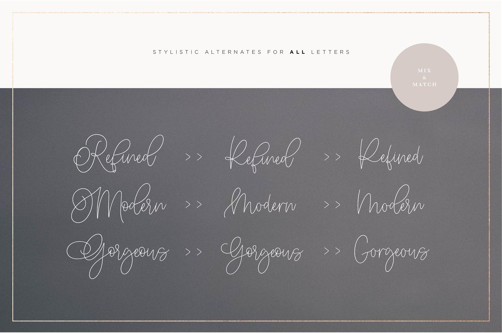 Somersette Script Font example image 8