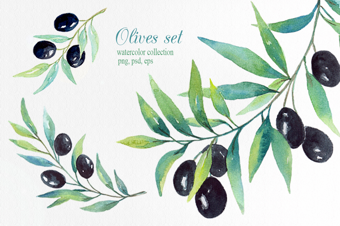 Olive set. Watercolor collection. example image 2