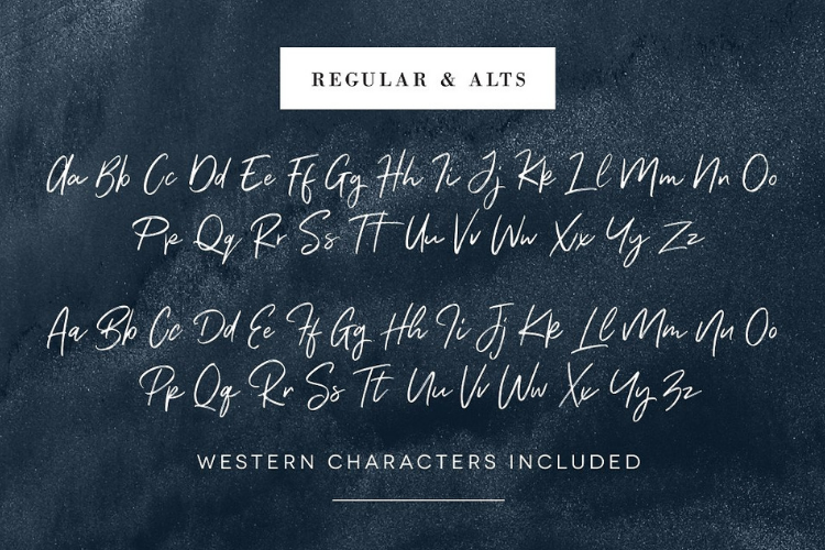 Renegade - Hand Painted Signature - Font example image 8