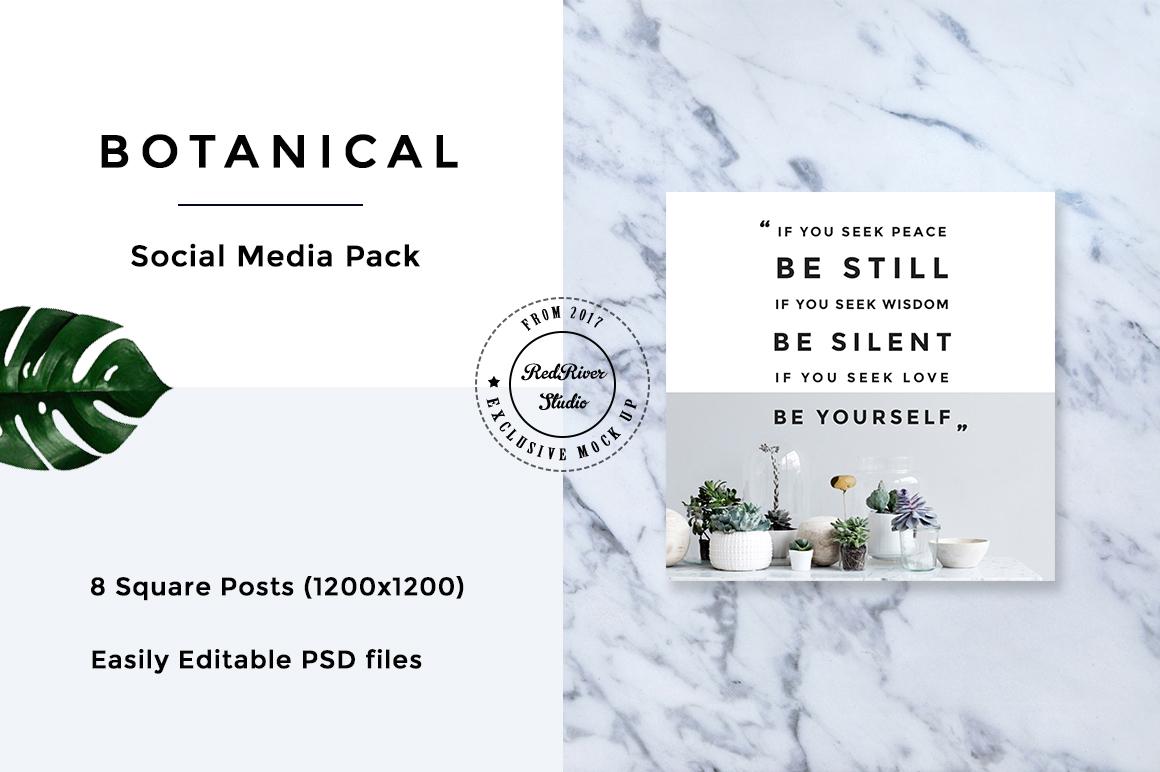Botanical Social Media Pack example image 3