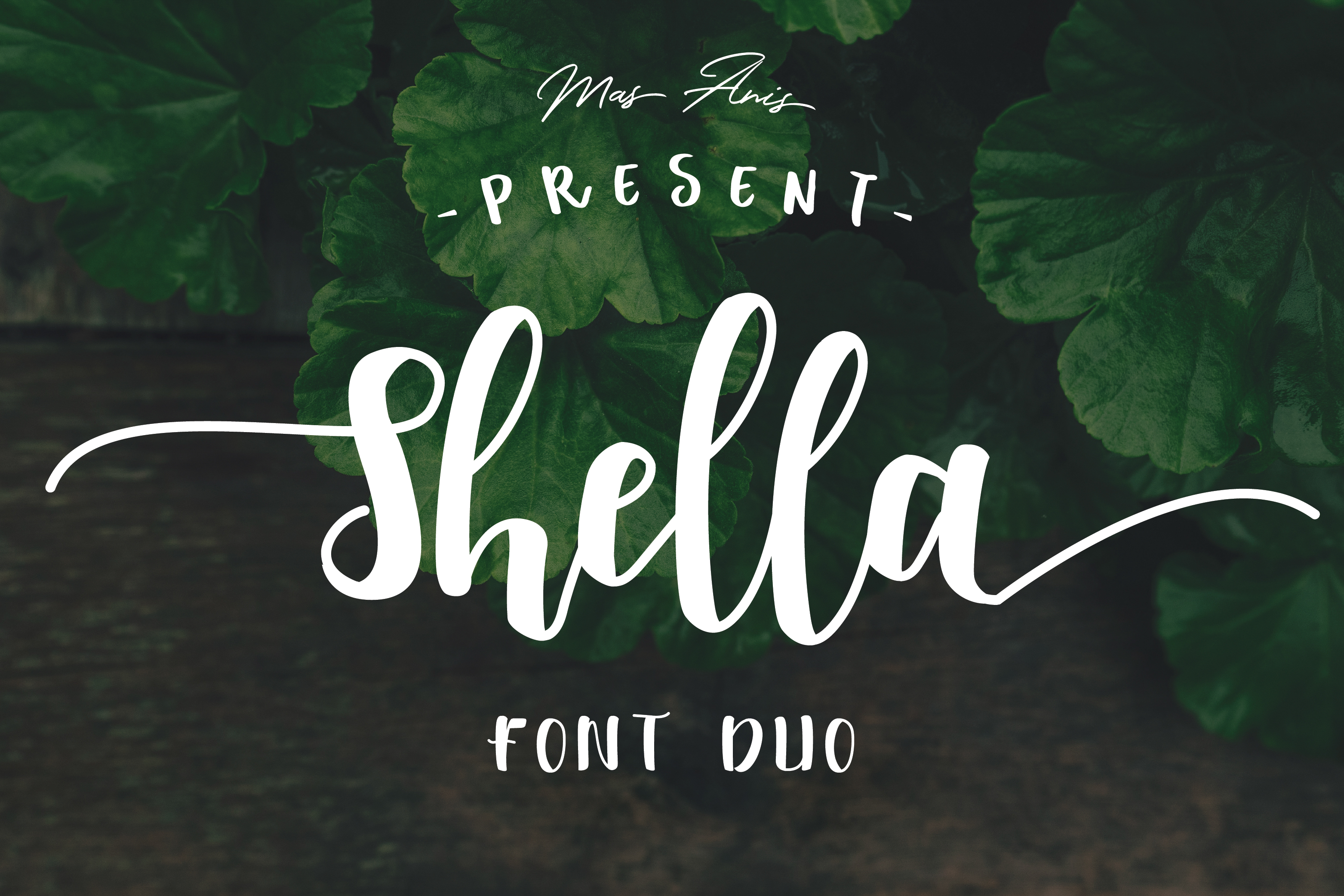 Shella Font Duo - Intro Sale ! example image 1