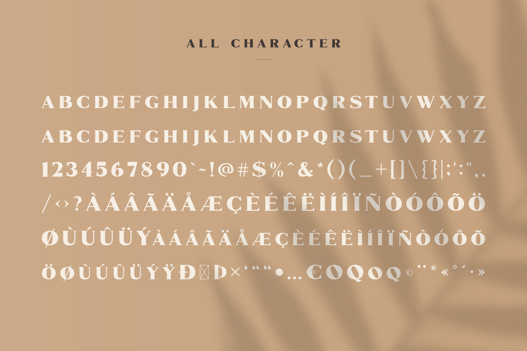 Marques - Modern Serif Font Family example image 8