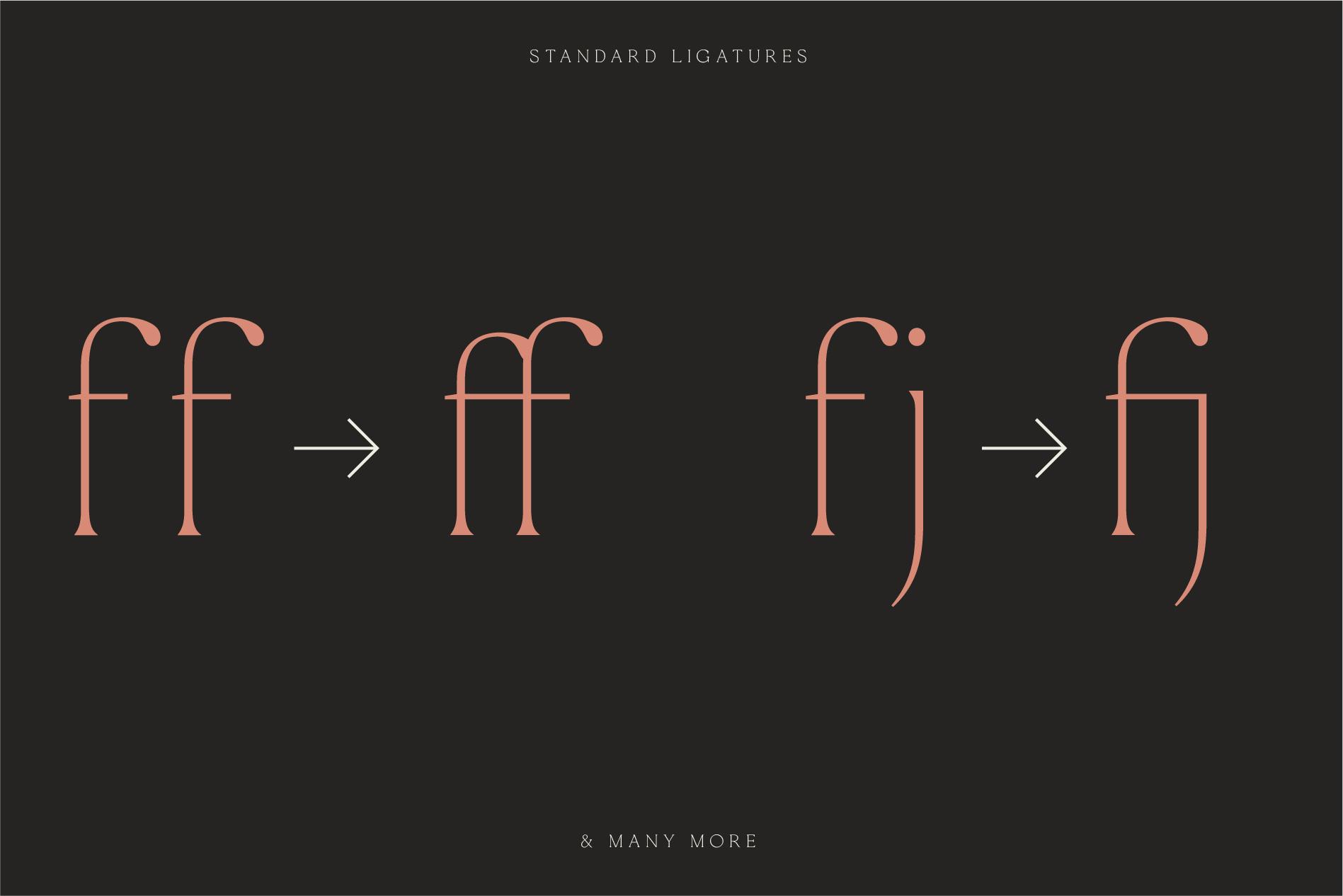 La Rosa Elegant Unique Serif Font example image 3
