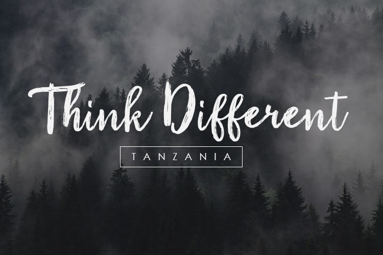 Tanzania Script Font example image 4