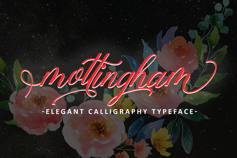 Mottingham Elegant Calligraphy Typeface example image 11
