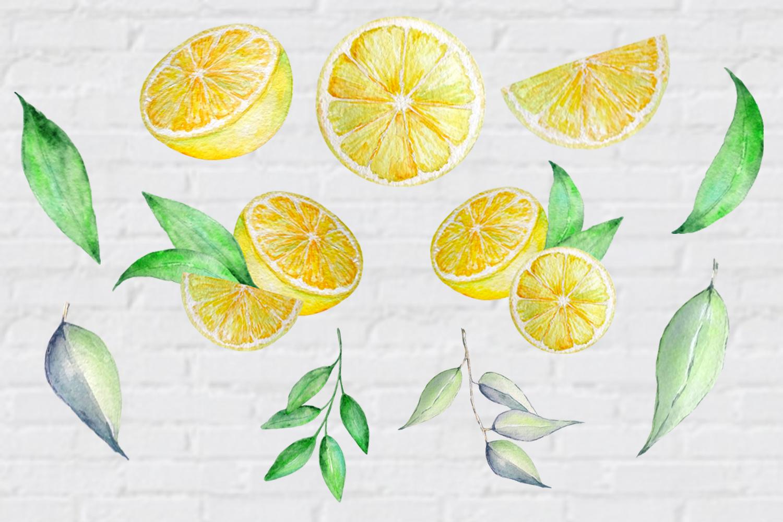 Watercolor Lemon Clipart, Tropical Fruit example image 3