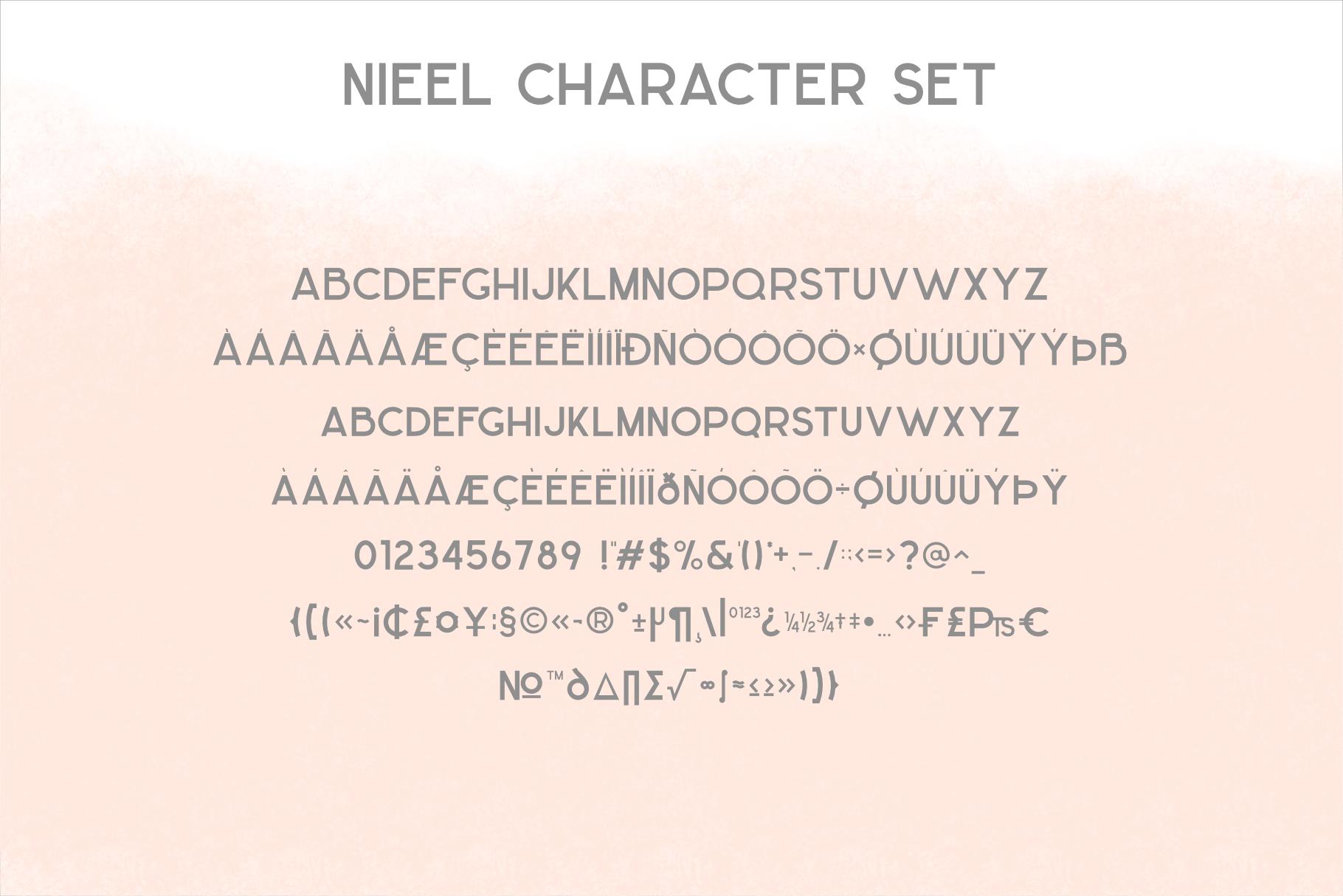 NIEEL example image 9