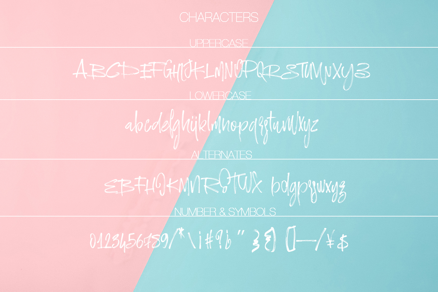 Ramsterink Brush Font example image 9