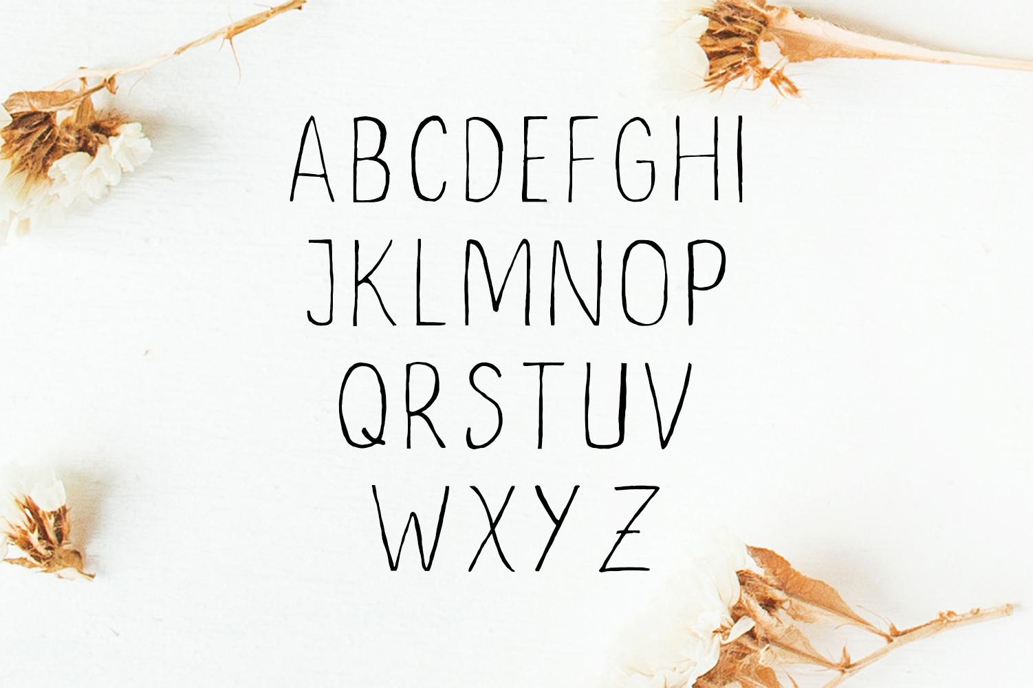 Ceica Handwritten Duo Font + Bonus example image 3