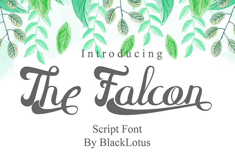 The Falcon example image 1