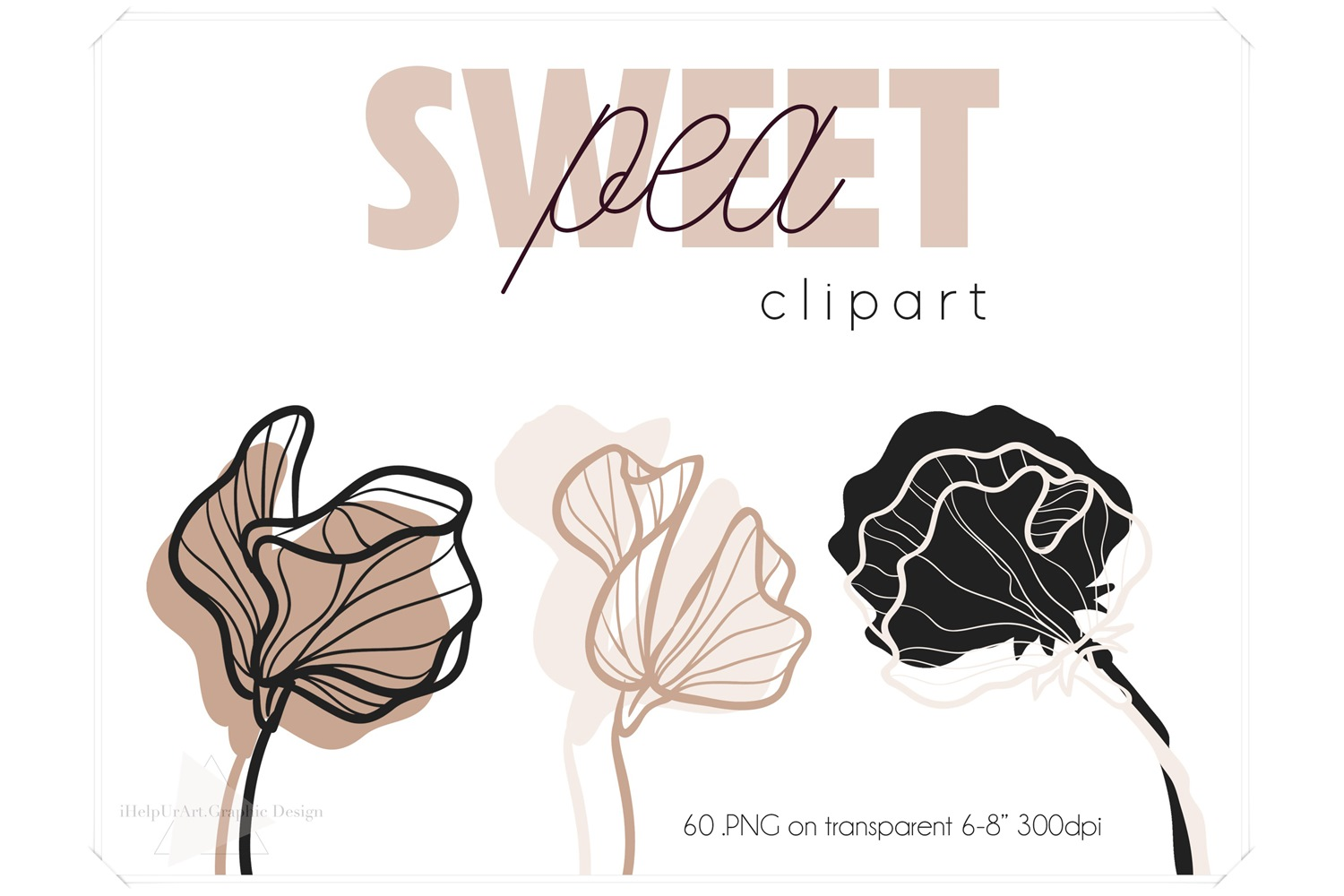 Sweet Pea Clipart - Floral Clip Art - Outline Botanical example image 1