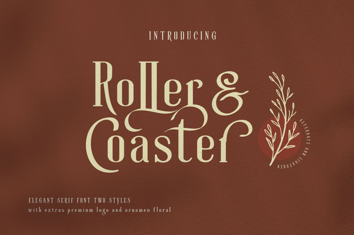 Roller Coaster Elegant Serif Extra example image 1