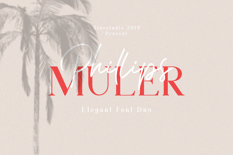 Phillips Muler // Elegant Font Duo example image 1