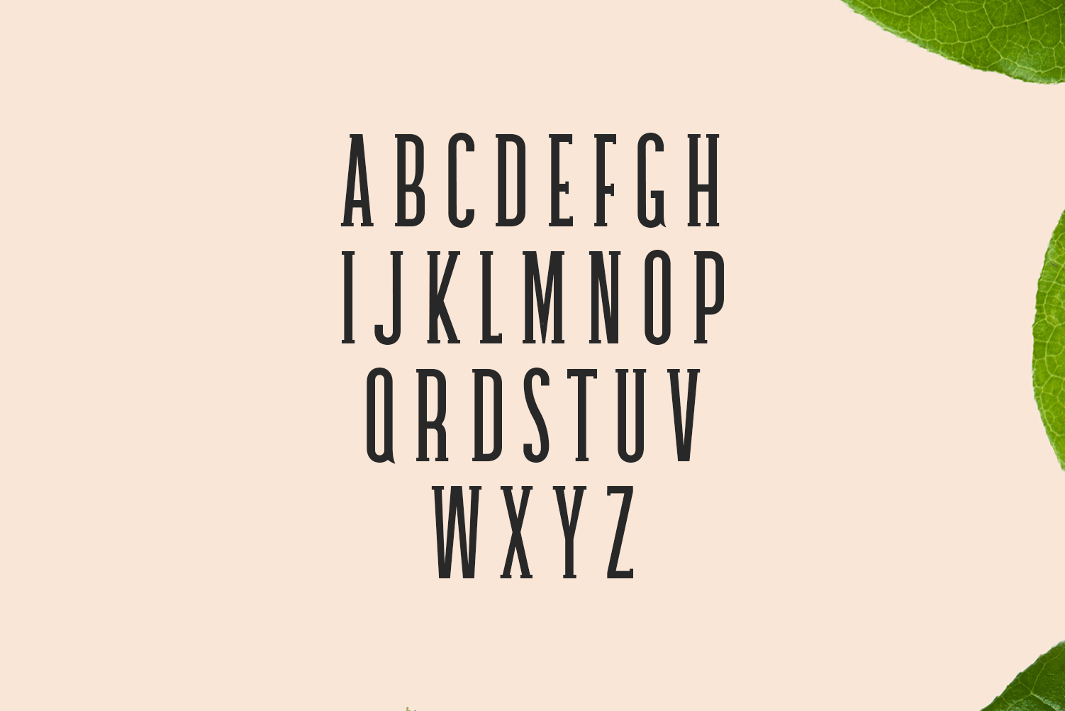 Galvin Slab Serif Font Family Pack example image 2