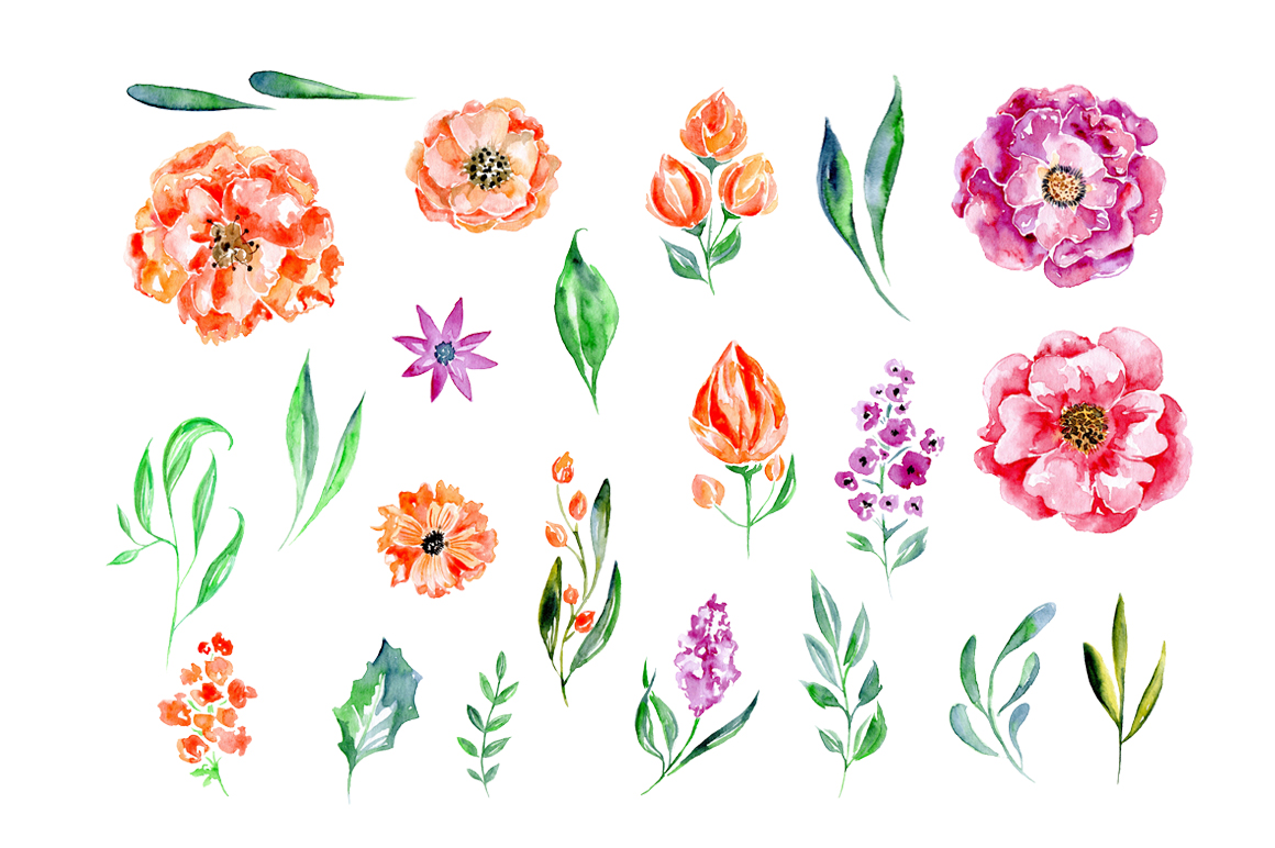 Watercolor flowers set, 23 elements example image 2