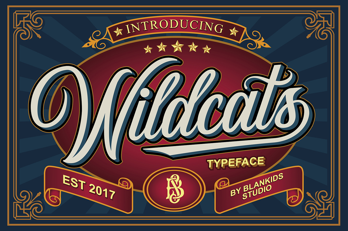 Wildcats Typeface (40% off) example image 1