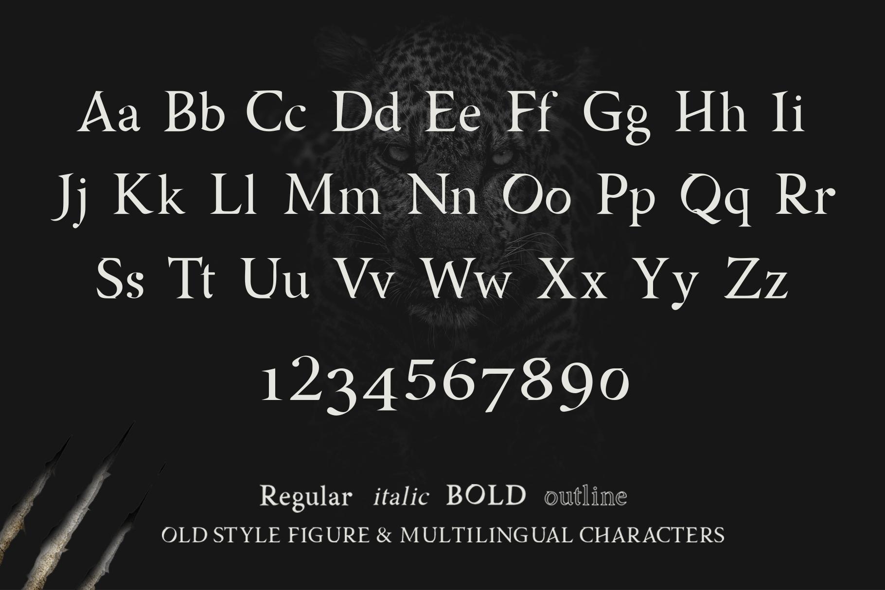 AsMATH A Sharp Serif Font example image 7