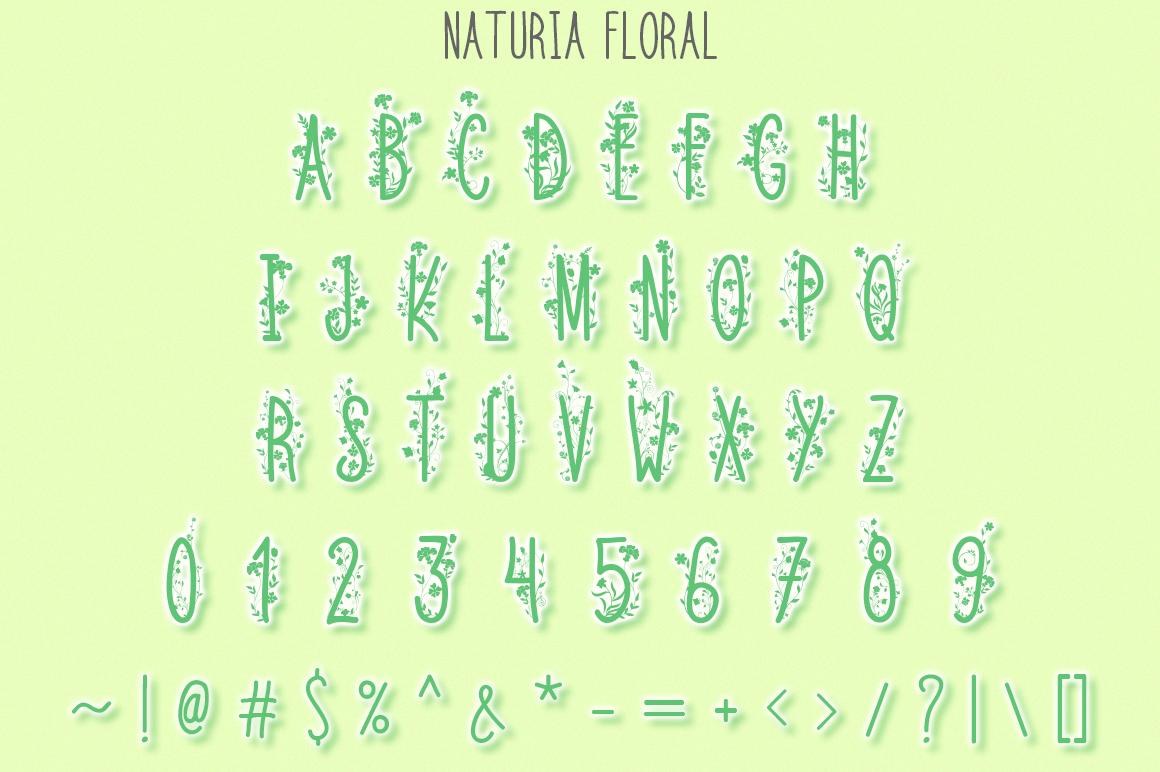 Naturia Floral Font & Bonus Extras example image 2