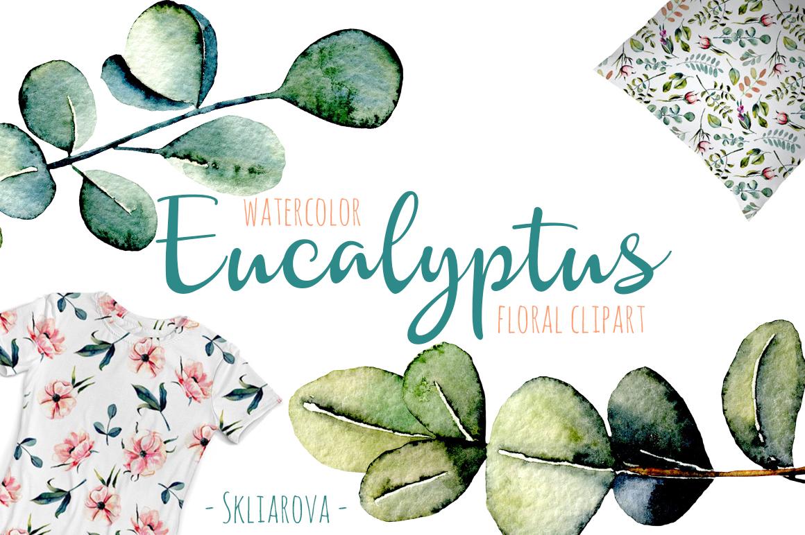 Eucalyptus watercolor clipart example image 1