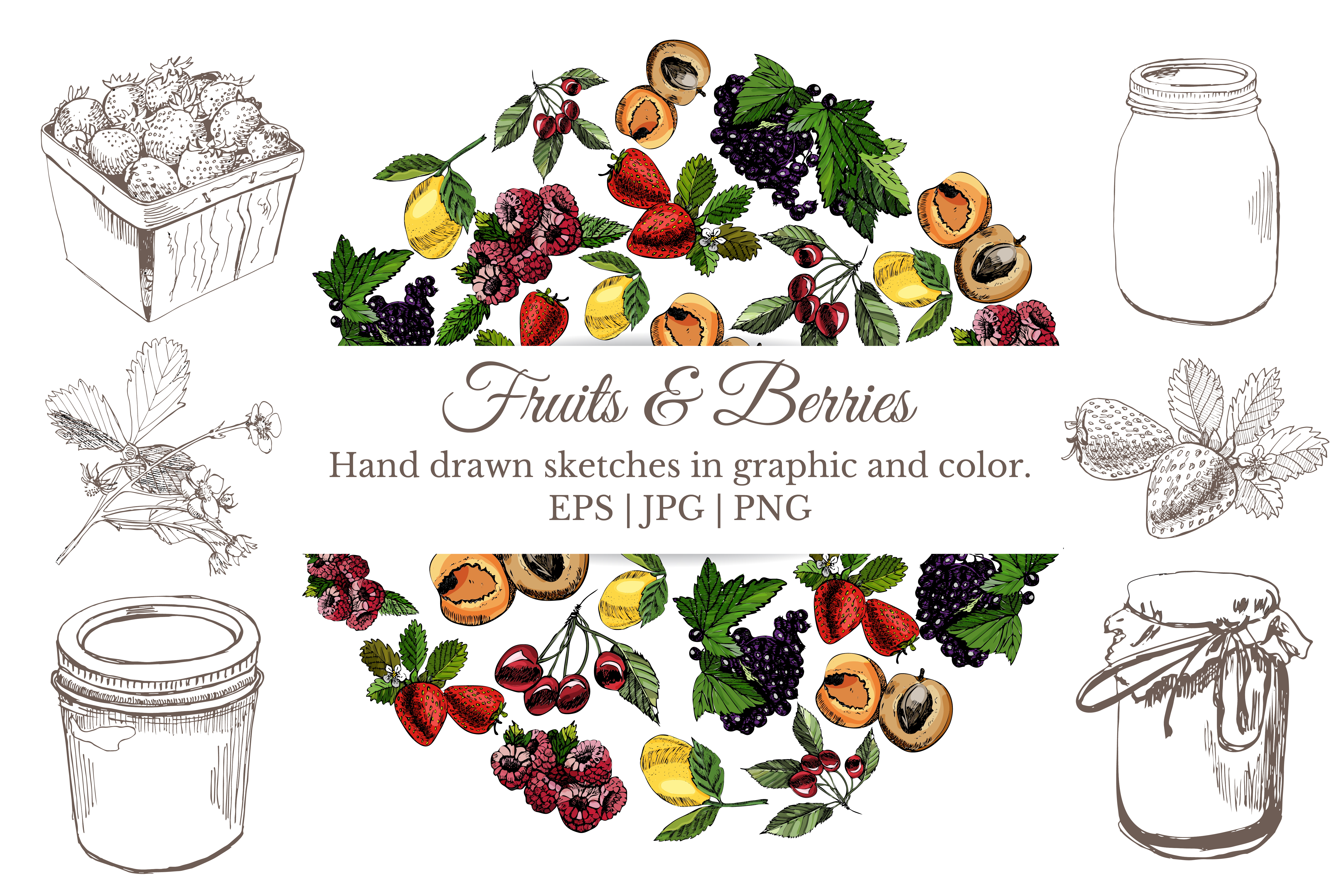Bundle with sketches of berries and fruits ink and colored. example image 1